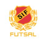 Skoftebyn Futsal